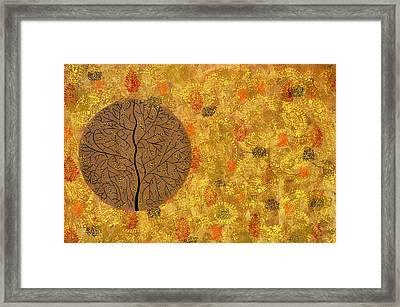 Aaatamvas Framed Print by Sumit Mehndiratta