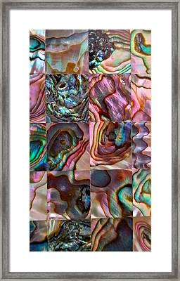 Abalone Macro Framed Print by Mark Victors