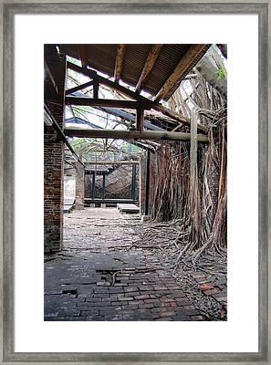 Abandon Warehouse  Framed Print