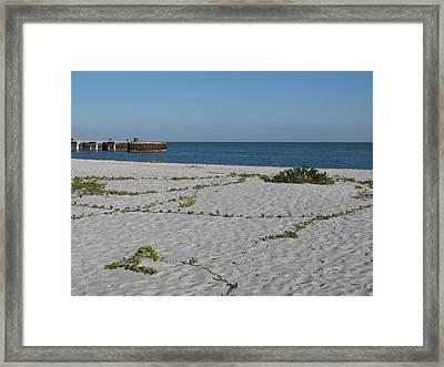 Abandonded Pier Framed Print