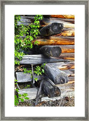 Framed Print featuring the photograph Abandoned  by Cathy Mahnke