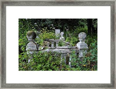Framed Print featuring the photograph Abandoned Cemetery 2 by Cathy Mahnke