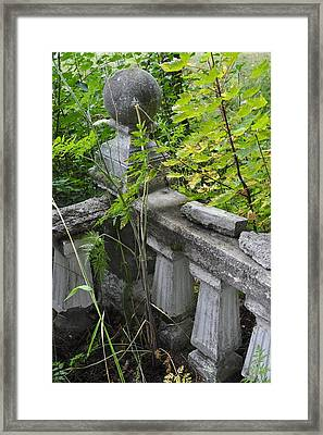 Framed Print featuring the photograph Abandoned Cemetery by Cathy Mahnke