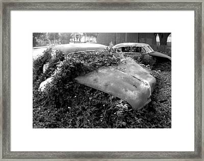 Abandoned Chevys Framed Print