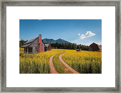 Abandoned Country Life Framed Print by Fred Larson