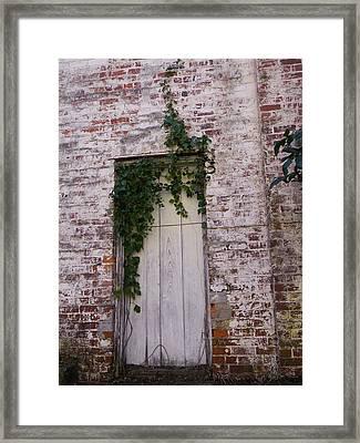 Abandoned Door Framed Print by Warren Thompson