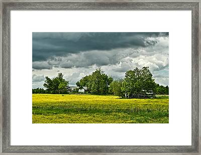 Abandoned Farm In Spring Framed Print