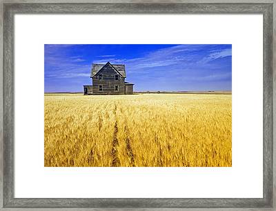 Abandoned Farmhouse Framed Print by Dave Reede