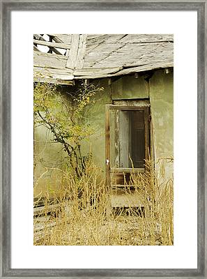 Abandoned Green House-001 Framed Print by David Allen Pierson