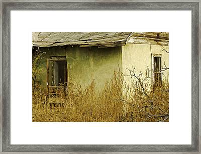 Abandoned Green House-003 Framed Print by David Allen Pierson