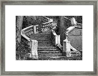 Abandoned Staircase Framed Print by Olivier Le Queinec