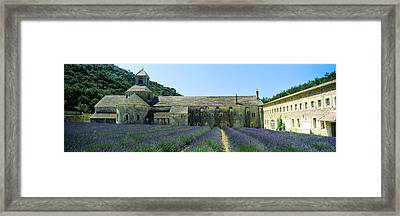Abbey In A Lavender Field, Abbaye De Framed Print by Panoramic Images