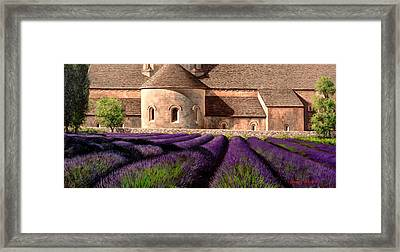 Abbey Lavender Framed Print by Michael Swanson