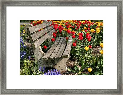 Abducted Park Bench Framed Print by Gene Walls
