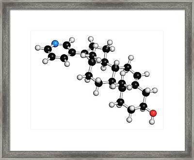 Abiraterone Prostate Cancer Drug Molecule Framed Print by Molekuul