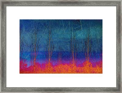 Ablaze II Framed Print by Jan Amiss Photography