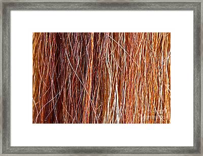 Ablaze Framed Print by Michelle Twohig