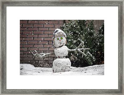 Abominable Framed Print by Steven  Michael