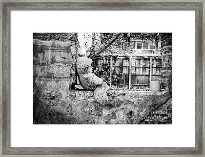Abandoned Teddy Bear I Framed Print by Dean Harte