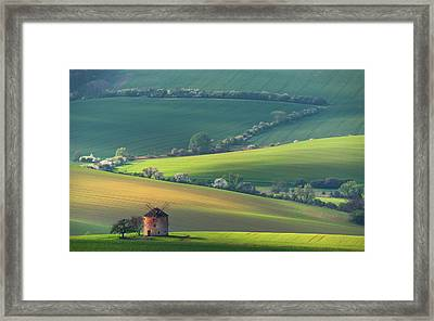 About Forms & Line's Framed Print