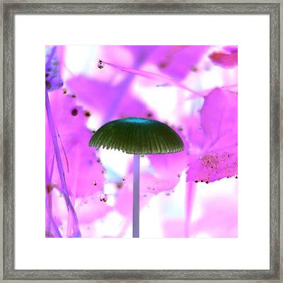 About To Fall Framed Print by Karl Jones