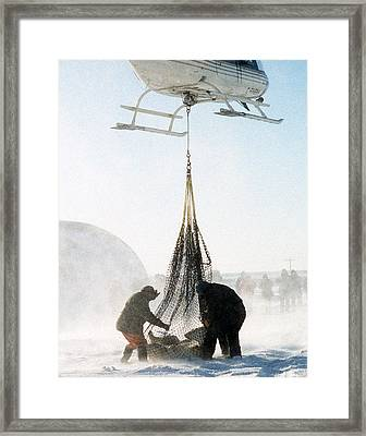 About To Lift Off Framed Print