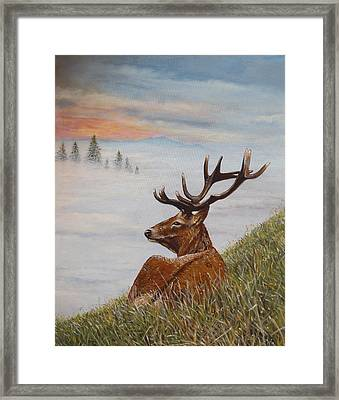 Above The Mist Framed Print by Arie Van der Wijst