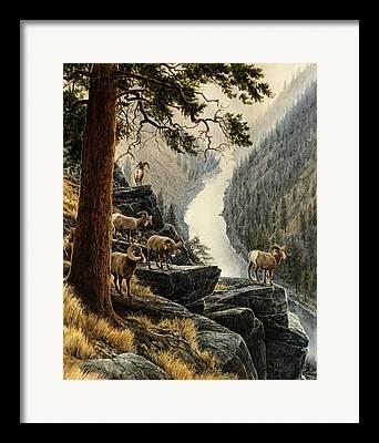 Ine Trees Framed Prints