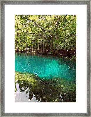 Above The Spring Framed Print by Sheri McLeroy