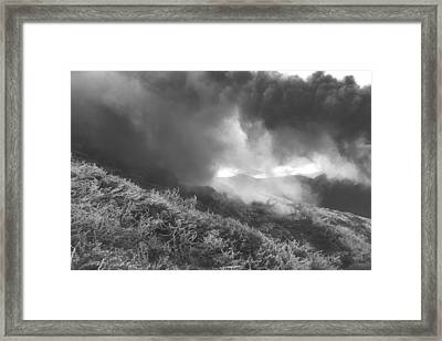 Above The Tree Line Framed Print
