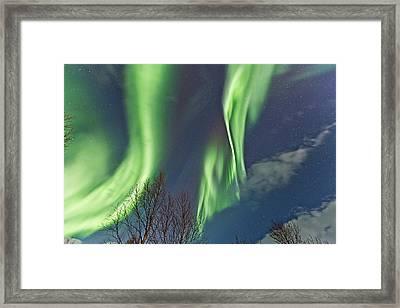 Above The Trees Framed Print by Frank Olsen