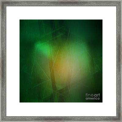 Abstract 1005 Framed Print by John Krakora