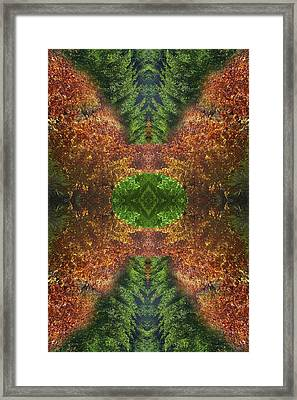 Abstract 164 Framed Print by J D Owen