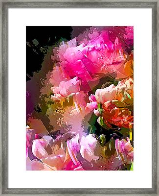 Abstract 272 Framed Print by Pamela Cooper