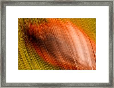 Abstract #5 Framed Print