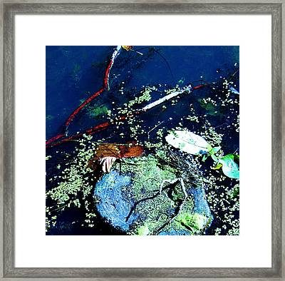 Abstract 79 Framed Print by Todd Sherlock