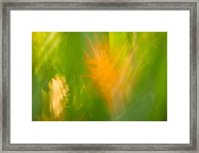 Abstract 9 Framed Print