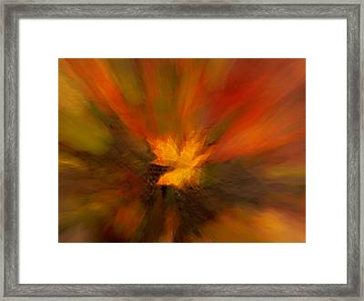Abstract Autumn Leaf Framed Print by Mary Jo Allen