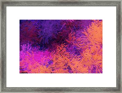 Abstract Autumn Framed Print