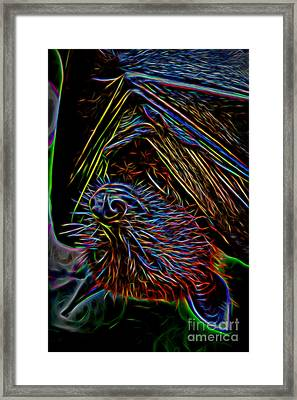 Abstract Bat Framed Print