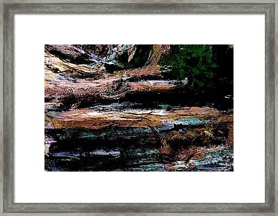 Abstract Beach Log Framed Print