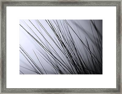 Abstract Black And White Framed Print by Sabina  Horvat