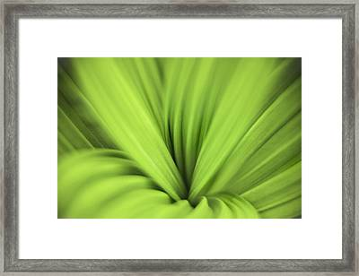 Abstract Bliss By Thomas Schoeller Framed Print by Thomas Schoeller