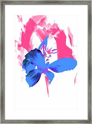 Abstract Blue Framed Print by Cathie Tyler
