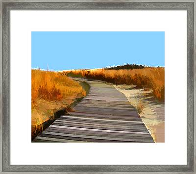 Abstract Boardwalk Over The Dunes Framed Print by Elaine Plesser