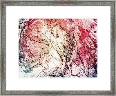 Abstract Branches Framed Print
