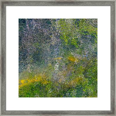 Abstract By Nature Framed Print