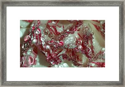 Abstract Carnation 2 Framed Print