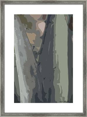 Framed Print featuring the photograph Abstract Century II by Kathy Ponce