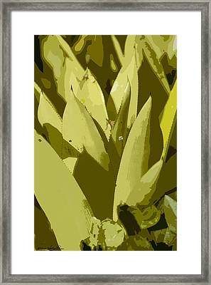 Framed Print featuring the photograph Abstract Century IIi by Kathy Ponce
